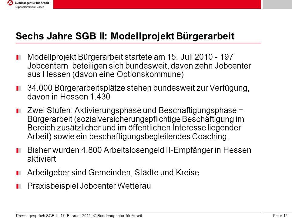 Seite 12 Sechs Jahre SGB II: Modellprojekt Bürgerarbeit Modellprojekt Bürgerarbeit startete am 15.