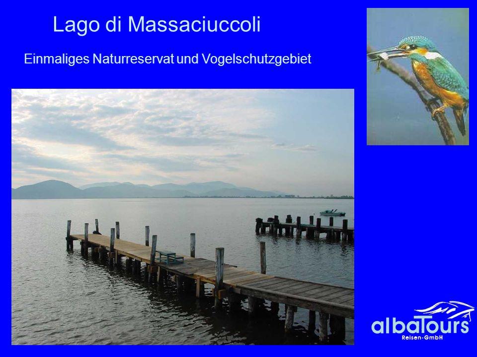 43 Lago di Massaciuccoli Einmaliges Naturreservat und Vogelschutzgebiet