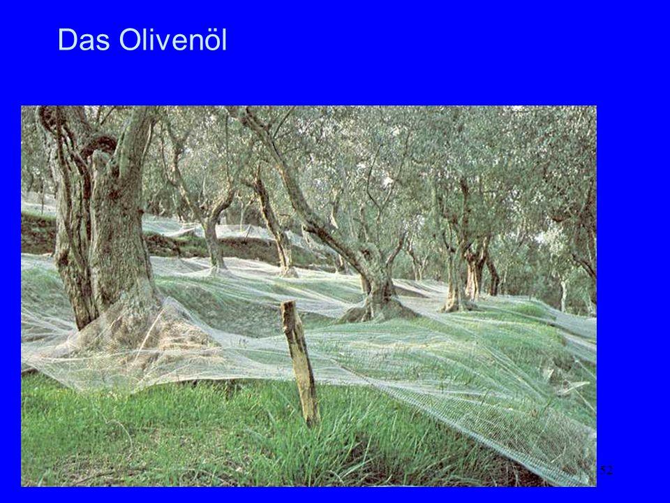 52 Das Olivenöl