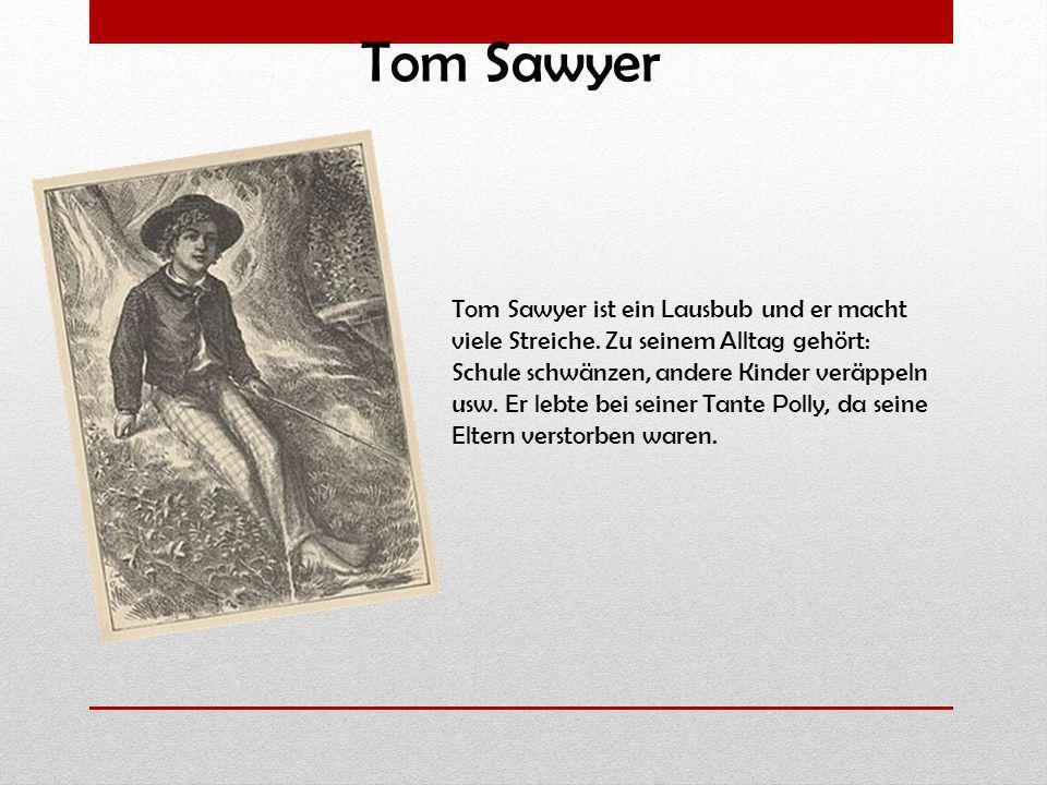 Tom Sawyer ist ein Lausbub und er macht viele Streiche. Zu seinem Alltag gehört: Schule schwänzen, andere Kinder veräppeln usw. Er lebte bei seiner Ta