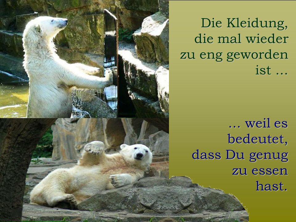 FunFriends www.FunFriends.de Die Kleidung, die mal wieder zu eng geworden ist......