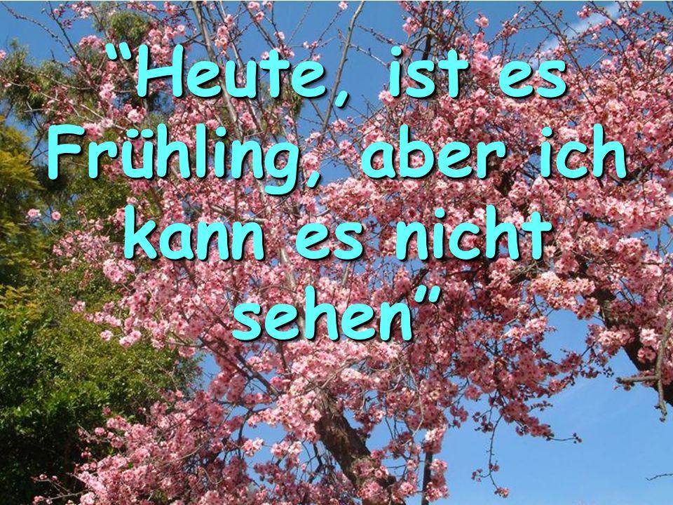 Heute, ist es Frühling, aber ich kann es nicht sehen