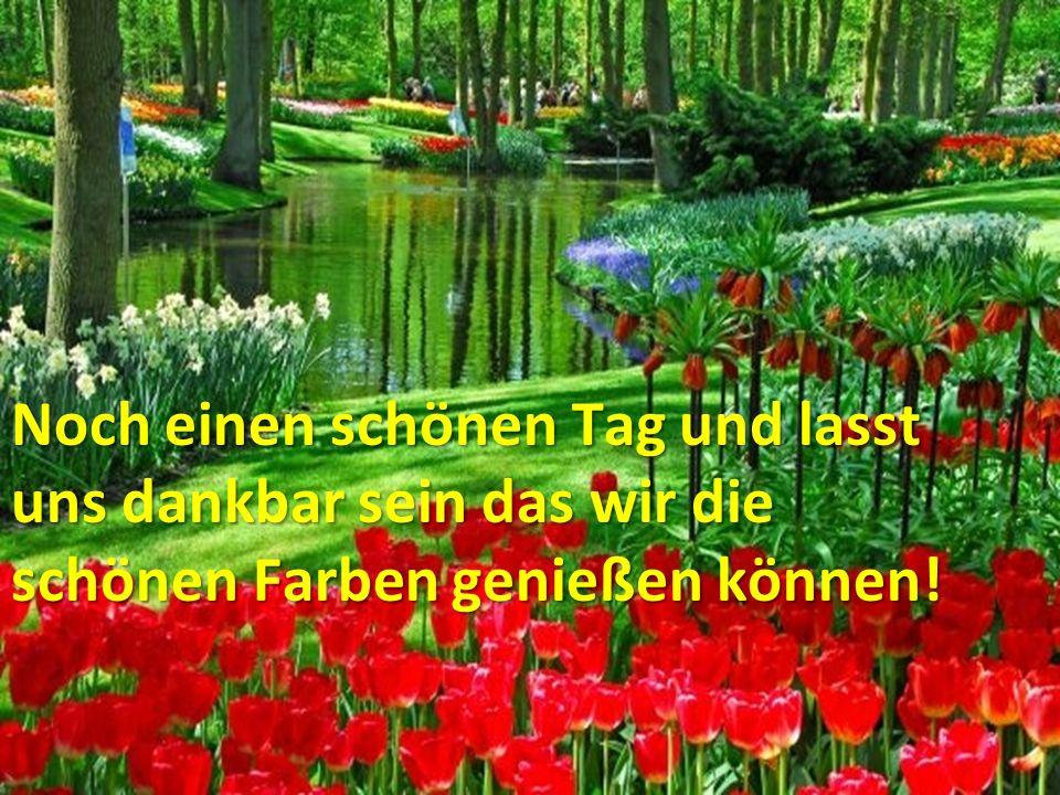 .. Noch einen schönen Tag und lasst uns dankbar sein das wir die schönen Farben genießen können!