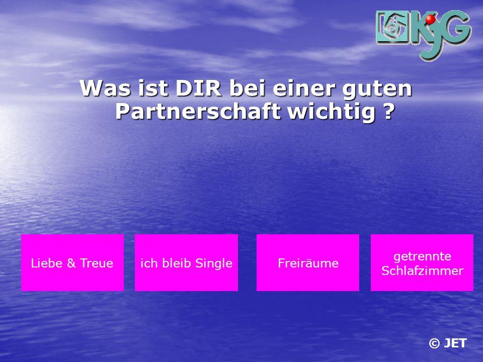 Was ist DIR bei einer guten Partnerschaft wichtig ? Liebe & Treueich bleib SingleFreiräume getrennte Schlafzimmer © JET