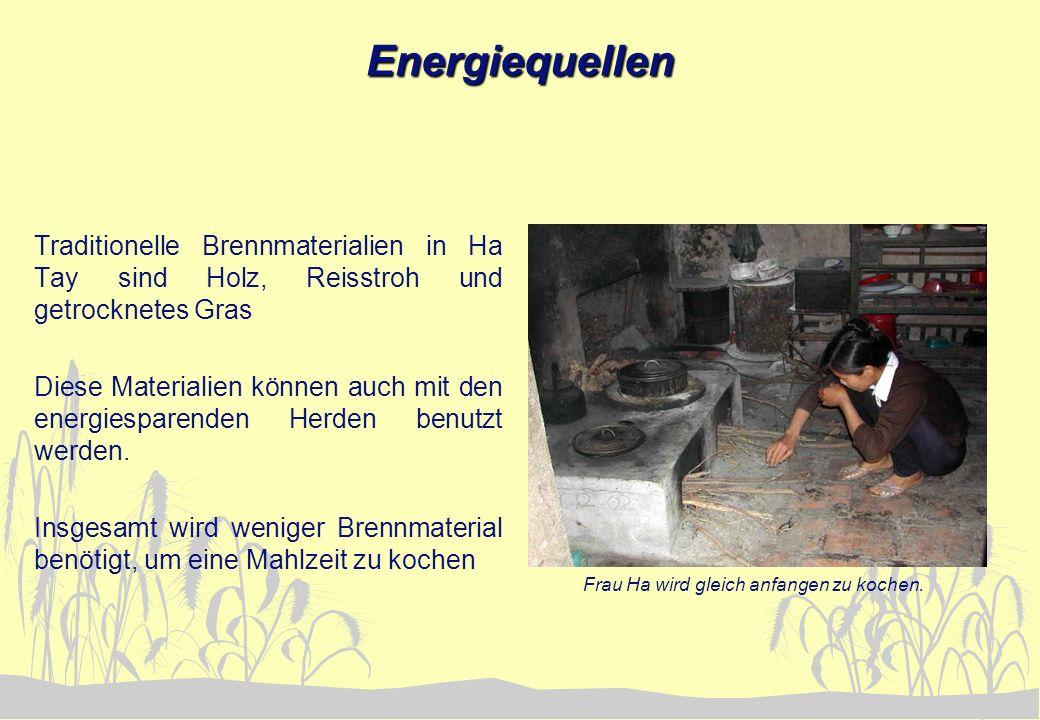Angepaßte Technologie Die Herde bestehen aus Zement und werden direkt an die Hauswand gebaut.