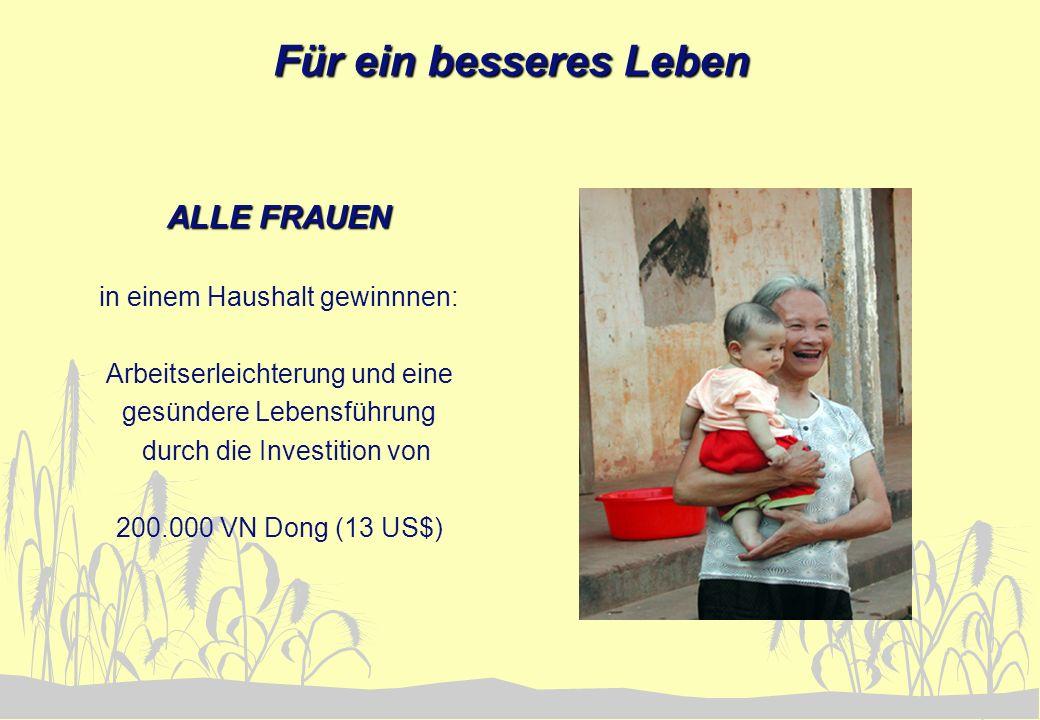 Für ein besseres Leben ALLE FRAUEN in einem Haushalt gewinnnen: Arbeitserleichterung und eine gesündere Lebensführung durch die Investition von 200.00