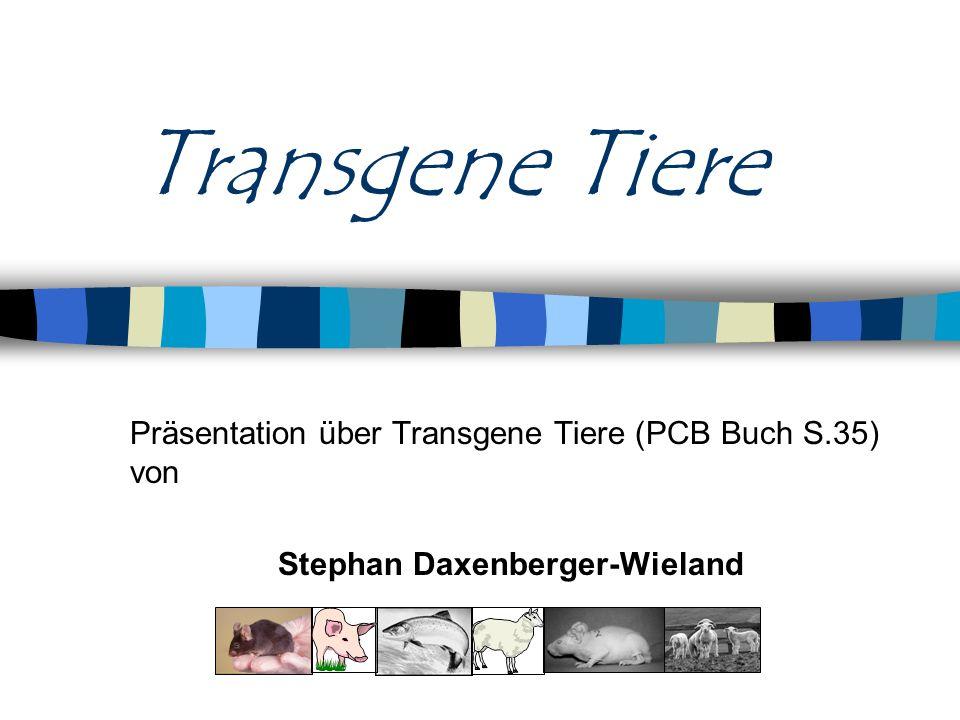 © Stephan Daxenberger-Wieland Inhalt meiner Präsentation Was sind Transgene Tiere.