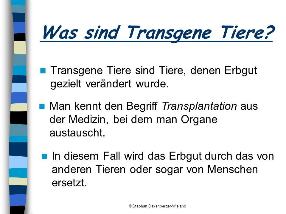 © Stephan Daxenberger-Wieland Was sind Transgene Tiere? Transgene Tiere sind Tiere, denen Erbgut gezielt verändert wurde. In diesem Fall wird das Erbg