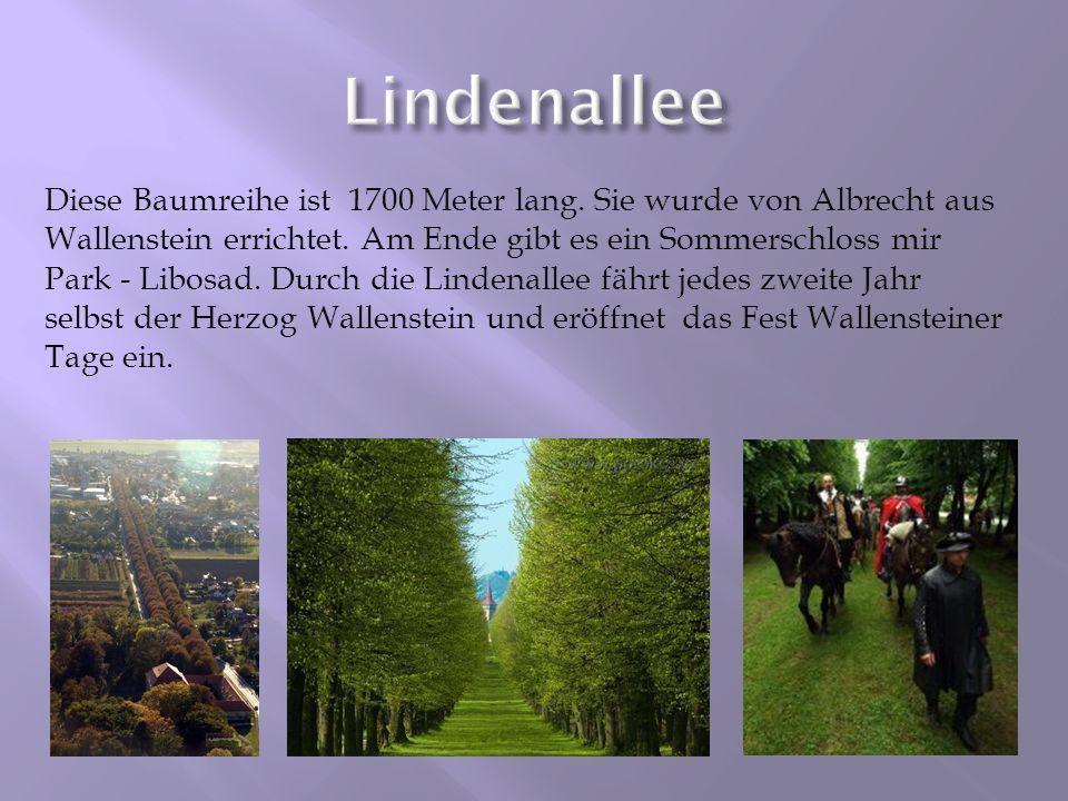 Diese Baumreihe ist 1700 Meter lang. Sie wurde von Albrecht aus Wallenstein errichtet. Am Ende gibt es ein Sommerschloss mir Park - Libosad. Durch die