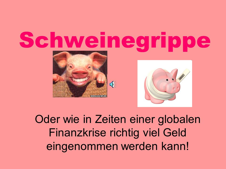 Schweinegrippe Oder wie in Zeiten einer globalen Finanzkrise richtig viel Geld eingenommen werden kann!