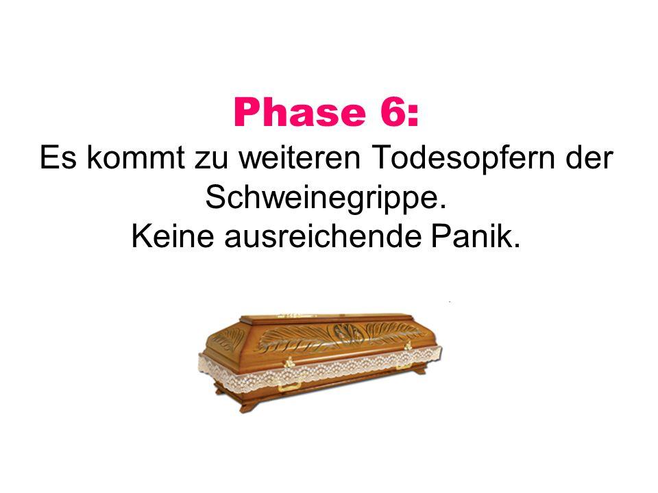 Phase 6: Es kommt zu weiteren Todesopfern der Schweinegrippe. Keine ausreichende Panik.