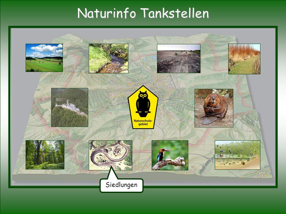 Siedlungen Naturinfo Tankstellen