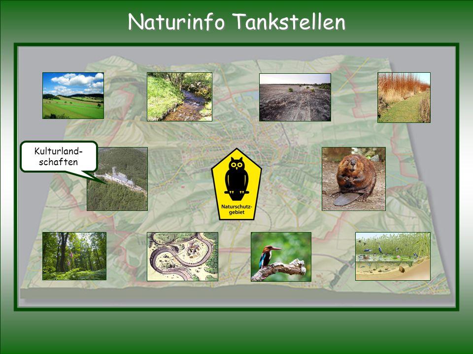 Kulturland- schaften Naturinfo Tankstellen