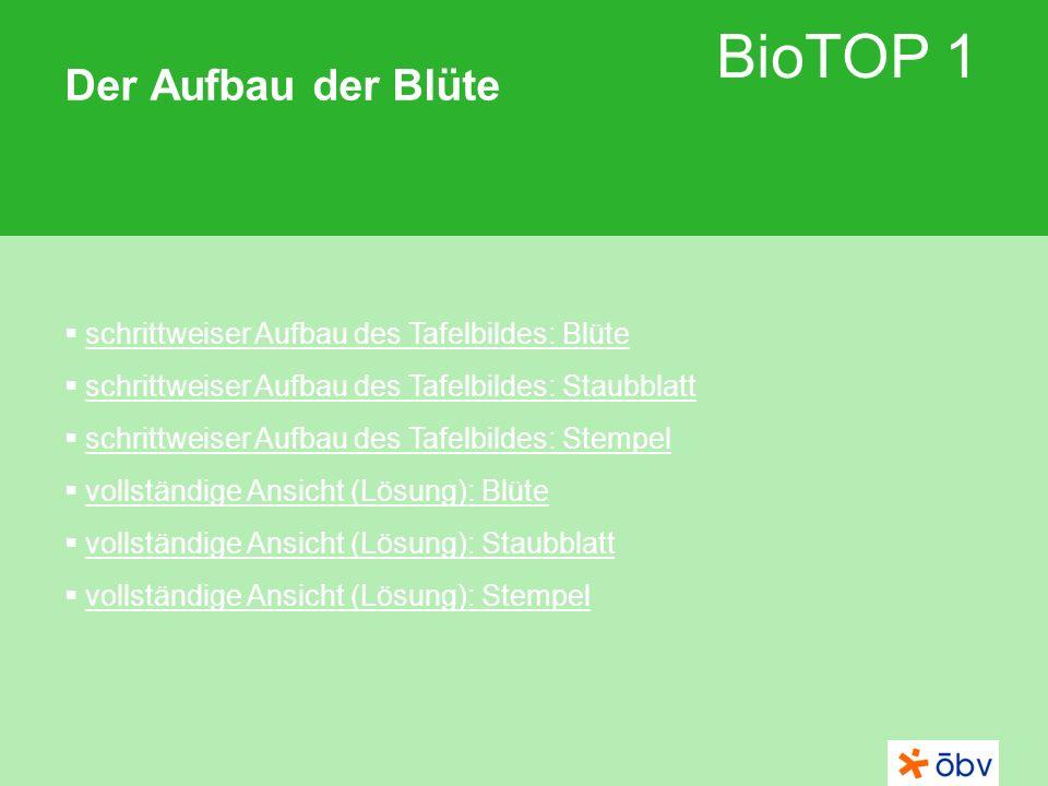 © Österreichischer Bundesverlag Schulbuch GmbH & Co KG | www.oebv.at BioTOP 1 Der Aufbau der Blüte 1 2 3 4 Staubblatt Kronblatt Kelchblatt Stempel 1 2 3 4