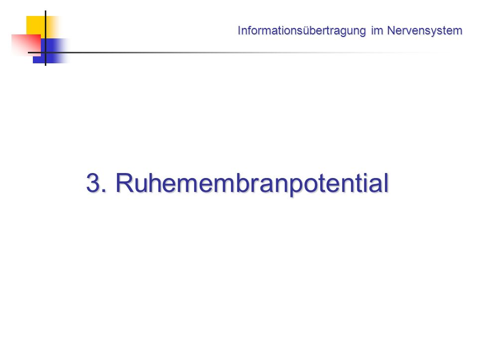 Informationsübertragung im Nervensystem 3. Ruhemembranpotential