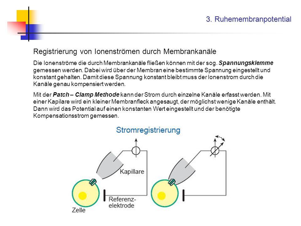 3. Ruhemembranpotential Registrierung von Ionenströmen durch Membrankanäle Die Ionenströme die durch Membrankanäle fließen können mit der sog. Spannun