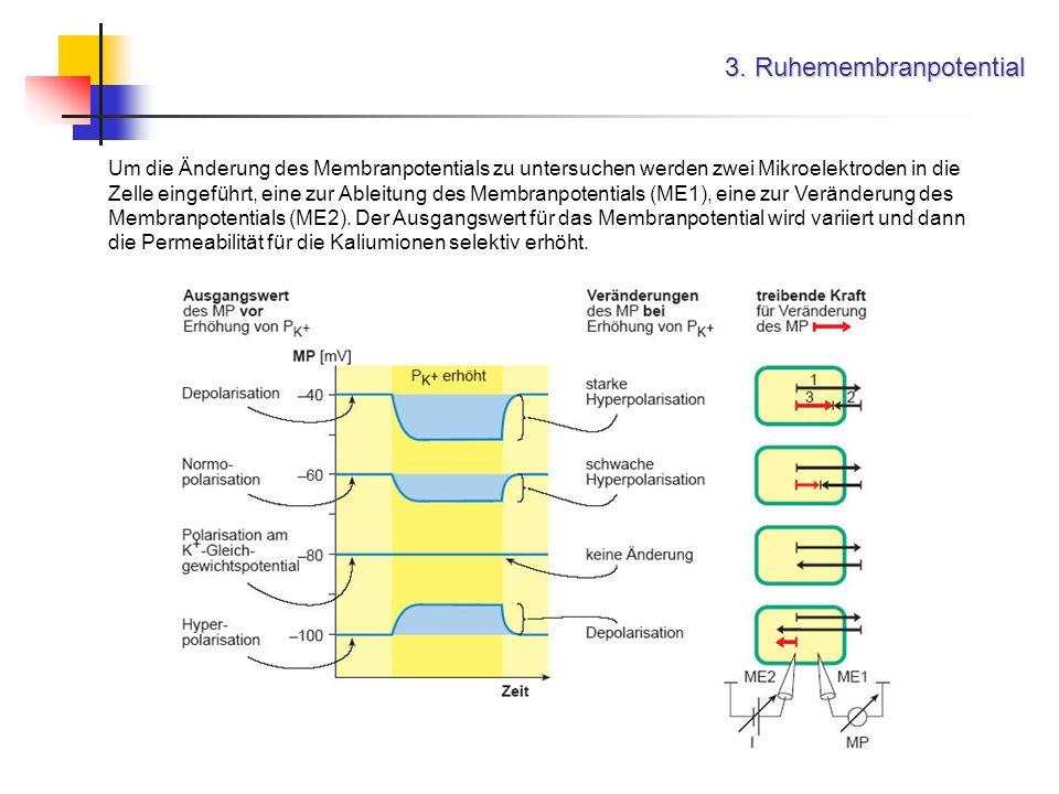 3. Ruhemembranpotential Um die Änderung des Membranpotentials zu untersuchen werden zwei Mikroelektroden in die Zelle eingeführt, eine zur Ableitung d
