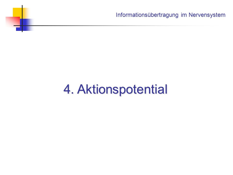 Informationsübertragung im Nervensystem 4. Aktionspotential