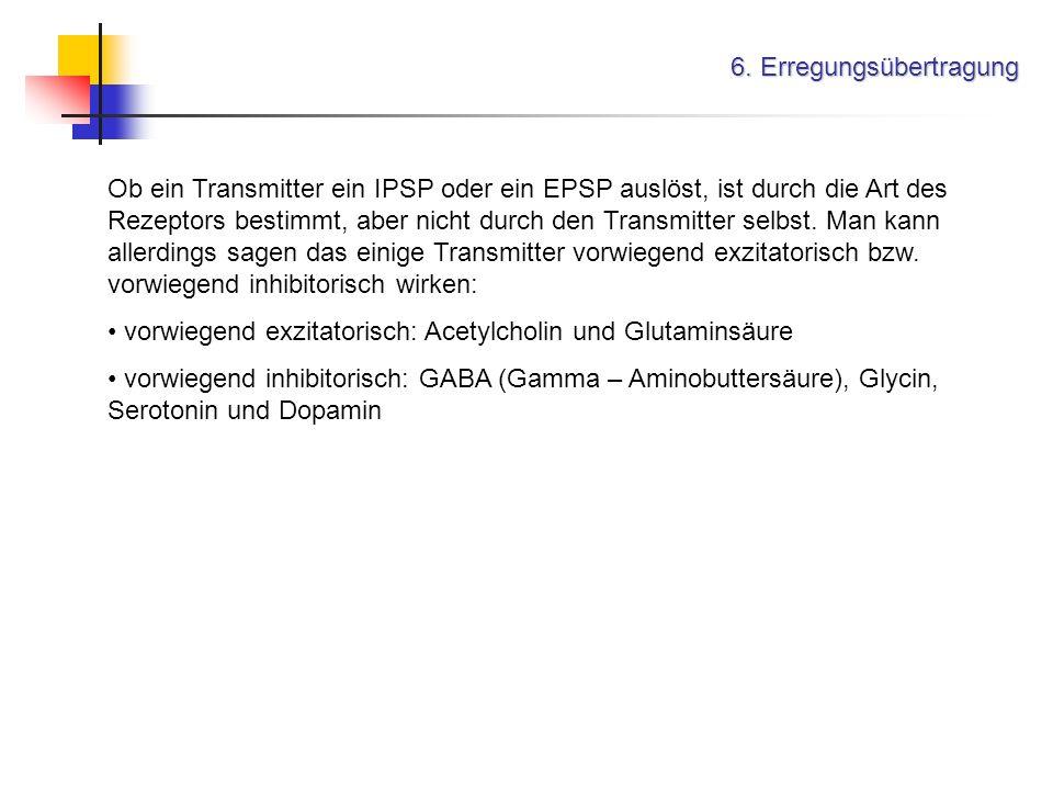6. Erregungsübertragung Ob ein Transmitter ein IPSP oder ein EPSP auslöst, ist durch die Art des Rezeptors bestimmt, aber nicht durch den Transmitter