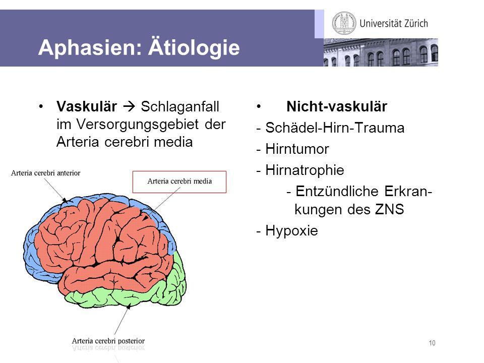 10 Aphasien: Ätiologie Vaskulär Schlaganfall im Versorgungsgebiet der Arteria cerebri media Nicht-vaskulär - Schädel-Hirn-Trauma - Hirntumor - Hirnatr