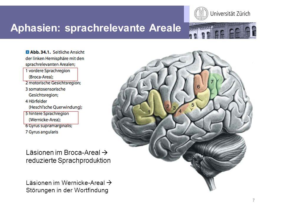 7 Aphasien: sprachrelevante Areale Läsionen im Broca-Areal reduzierte Sprachproduktion Läsionen im Wernicke-Areal Störungen in der Wortfindung