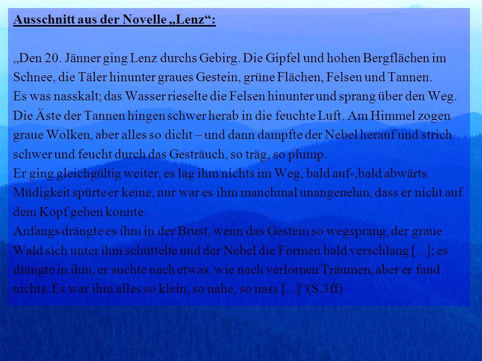 Ausschnitt aus der Novelle Lenz: Den 20.Jänner ging Lenz durchs Gebirg.