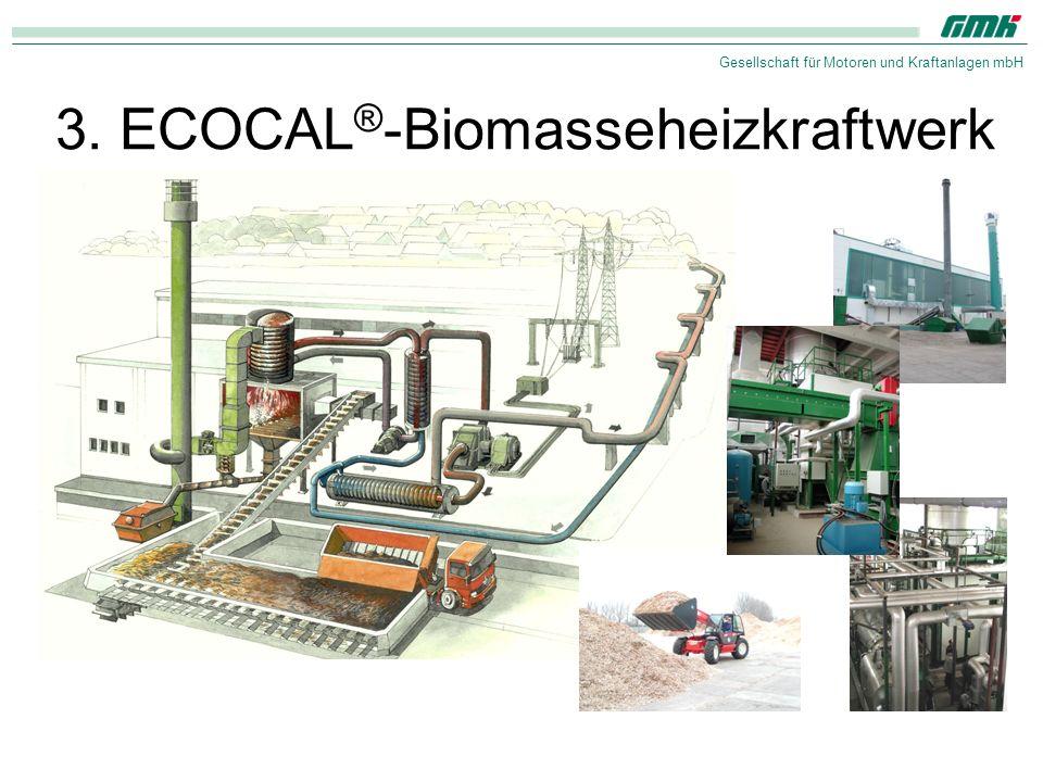 Gesellschaft für Motoren und Kraftanlagen mbH 3. ECOCAL ® -Biomasseheizkraftwerk