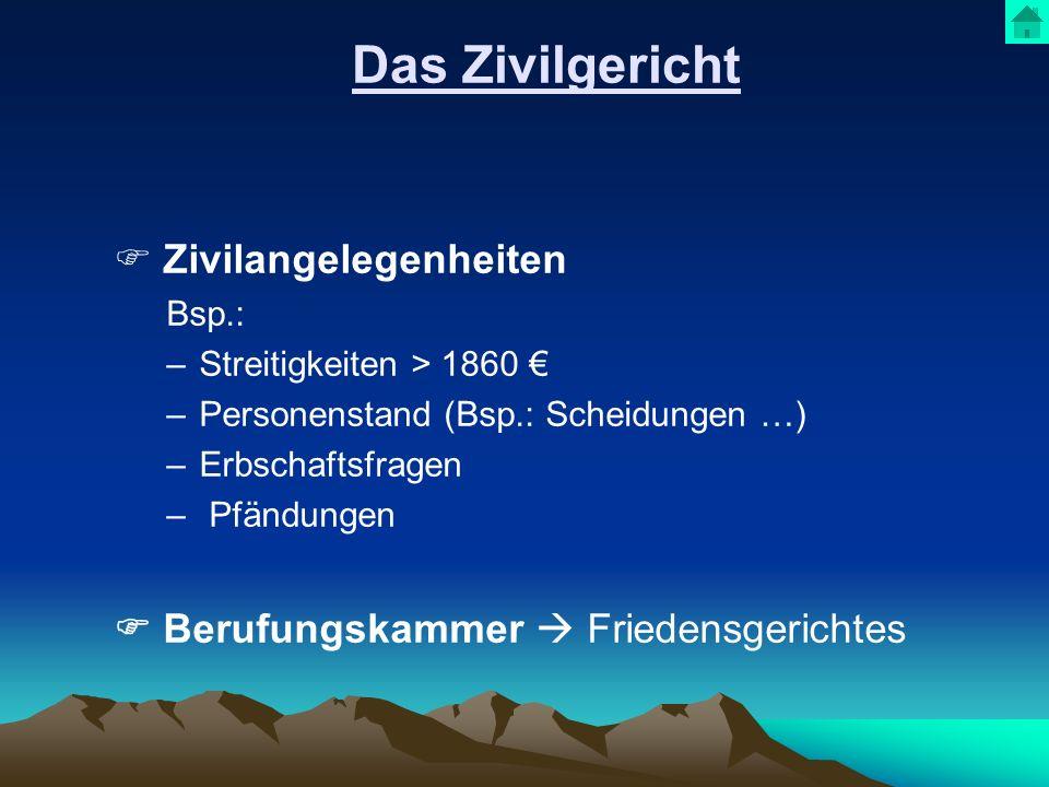 Das Zivilgericht Zivilangelegenheiten Bsp.: –Streitigkeiten > 1860 –Personenstand (Bsp.: Scheidungen …) –Erbschaftsfragen – Pfändungen Berufungskammer