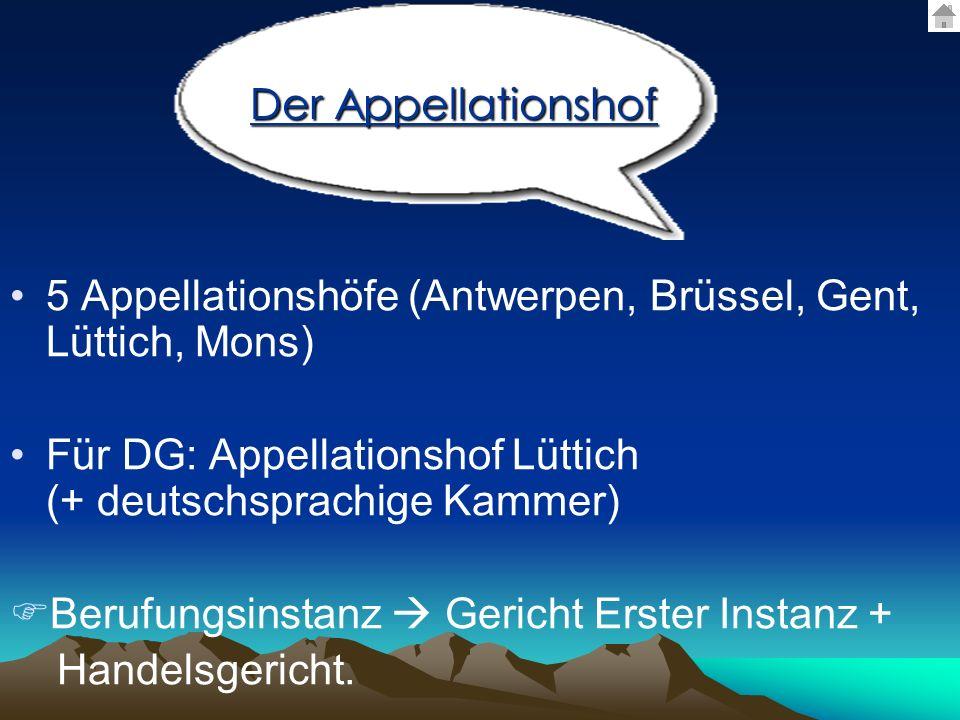 5 Appellationshöfe (Antwerpen, Brüssel, Gent, Lüttich, Mons) Für DG: Appellationshof Lüttich (+ deutschsprachige Kammer) Berufungsinstanz Gericht Erst