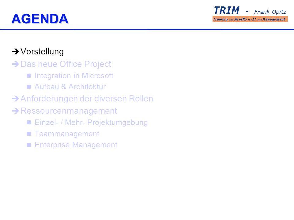 Office Project 2003 Enterprise schematischer Ablauf der einzelnen Komponenten