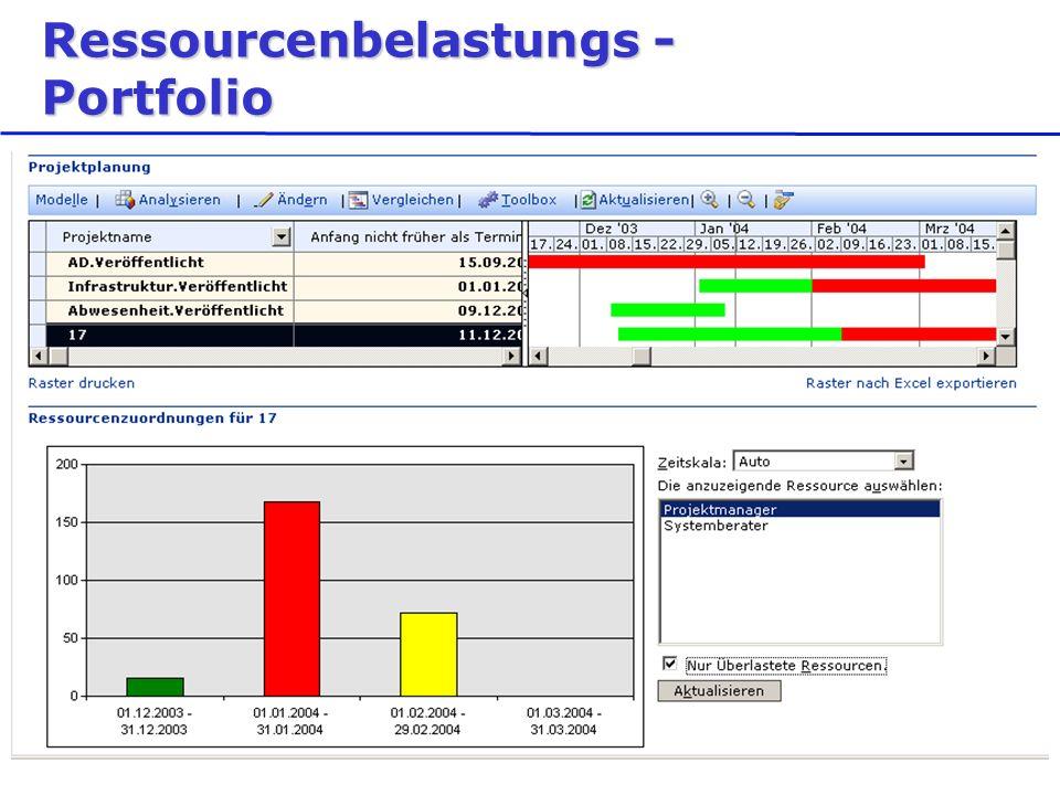 Ressourcenbelastungs - Portfolio