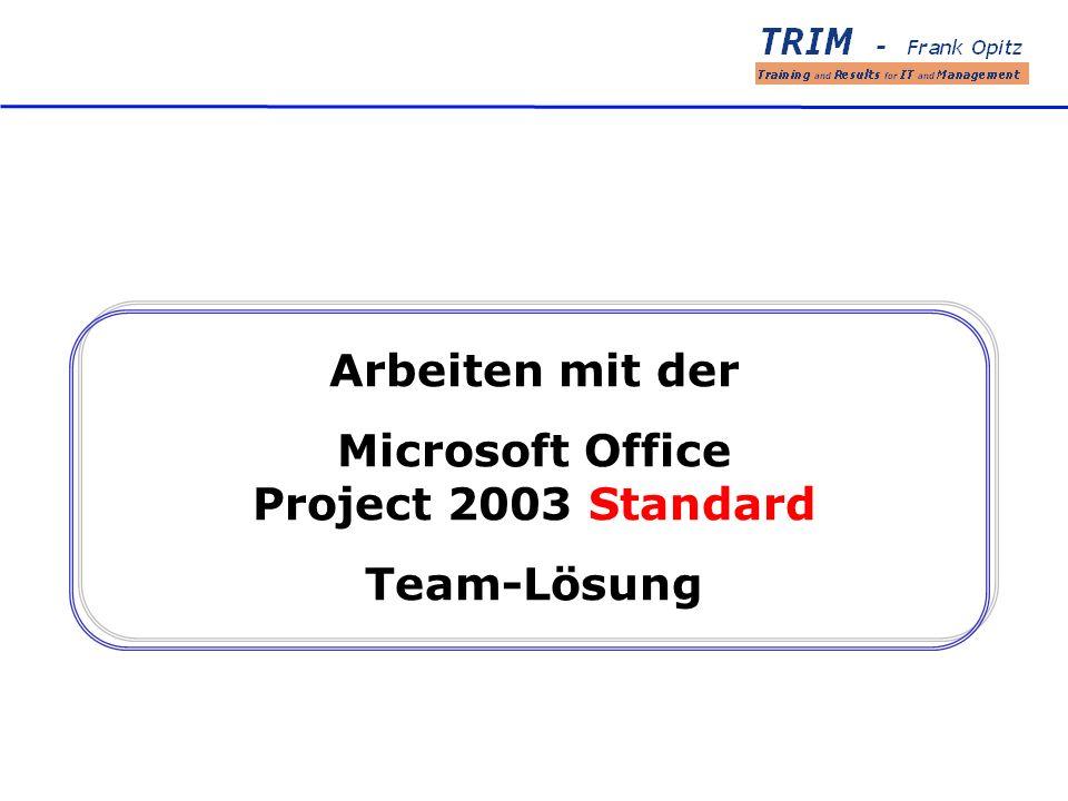 Arbeiten mit der Microsoft Office Project 2003 Standard Team-Lösung