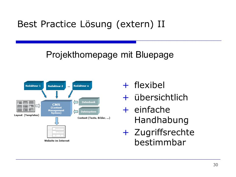 30 Best Practice Lösung (extern) II +flexibel +übersichtlich +einfache Handhabung +Zugriffsrechte bestimmbar Projekthomepage mit Bluepage
