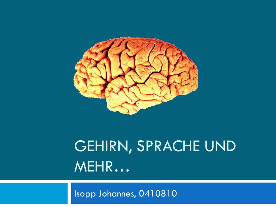 GEHIRN, SPRACHE UND MEHR… Isopp Johannes, 0410810