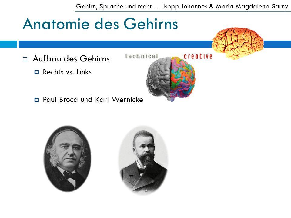 Anatomie des Gehirns Aufbau des Gehirns Rechts vs. Links Paul Broca und Karl Wernicke Gehirn, Sprache und mehr…Isopp Johannes & Maria Magdalena Sarny