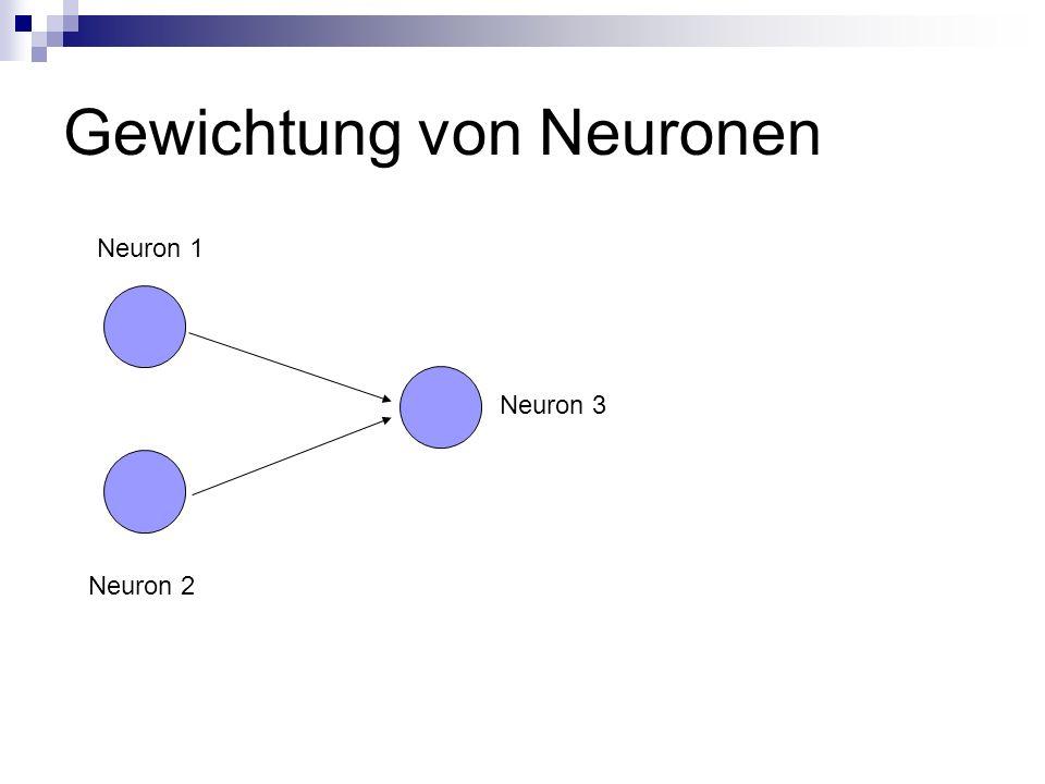Gewichtung von Neuronen Neuron 2 Neuron 1 Neuron 3