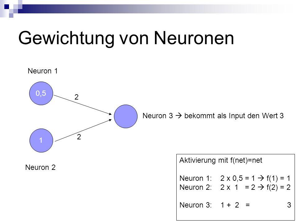 Gewichtung von Neuronen 0,5 Neuron 2 1 Neuron 1 Neuron 3 bekommt als Input den Wert 3 2 2 Aktivierung mit f(net)=net Neuron 1: 2 x 0,5 = 1 f(1) = 1 Ne