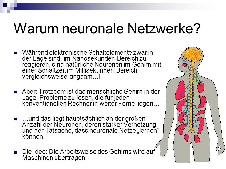 Warum neuronale Netzwerke? Während elektronische Schaltelemente zwar in der Lage sind, im Nanosekunden-Bereich zu reagieren, sind natürliche Neuronen