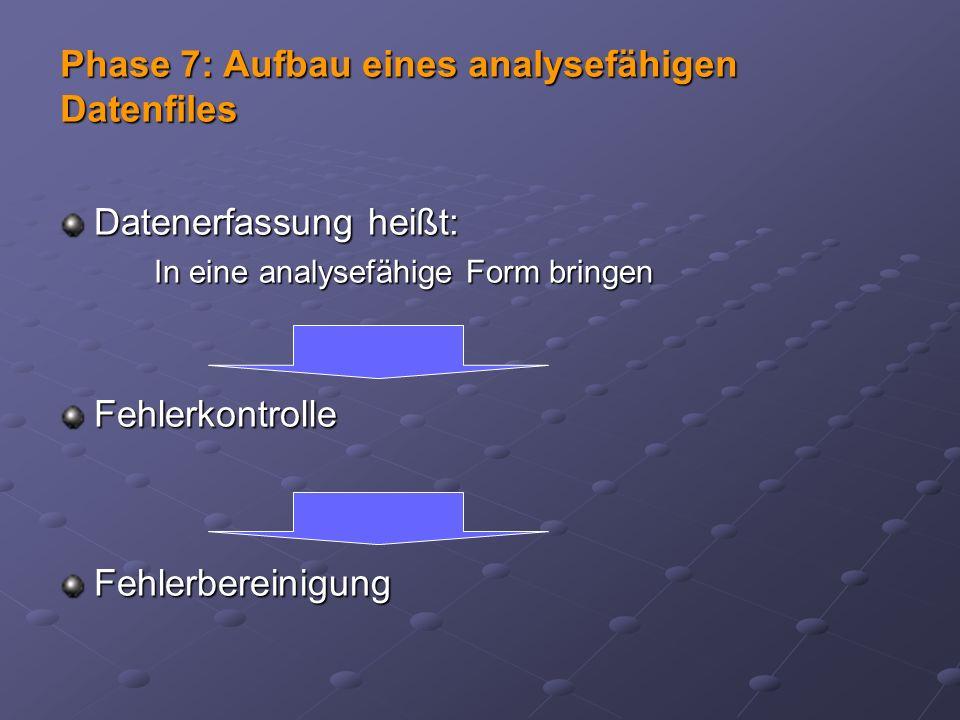 Datenerfassung heißt: In eine analysefähige Form bringen FehlerkontrolleFehlerbereinigung Phase 7: Aufbau eines analysefähigen Datenfiles