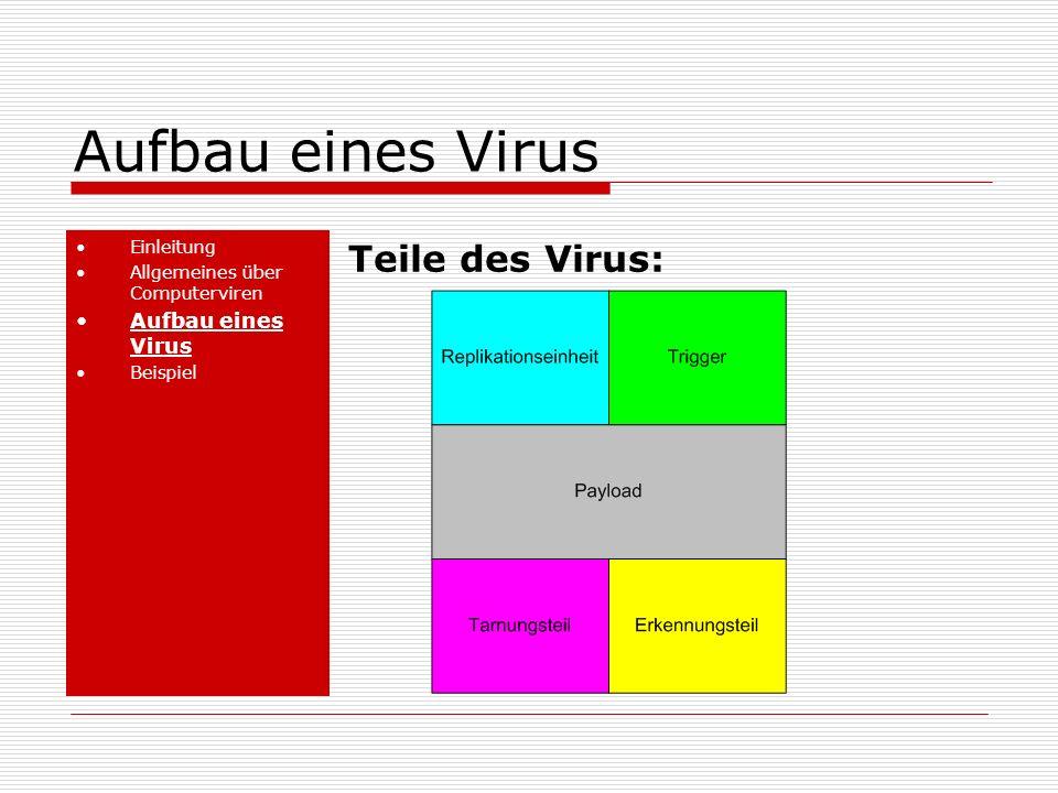 Aufbau eines Virus Einleitung Allgemeines über Computerviren Aufbau eines Virus Beispiel Teile des Virus: