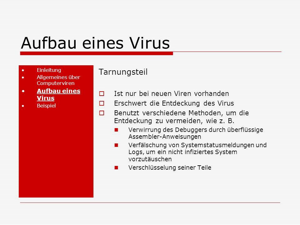 Aufbau eines Virus Einleitung Allgemeines über Computerviren Aufbau eines Virus Beispiel Tarnungsteil Ist nur bei neuen Viren vorhanden Erschwert die Entdeckung des Virus Benutzt verschiedene Methoden, um die Entdeckung zu vermeiden, wie z.