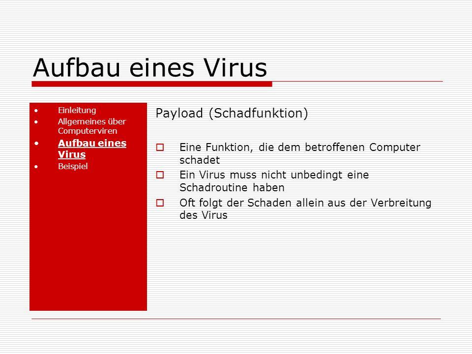 Aufbau eines Virus Einleitung Allgemeines über Computerviren Aufbau eines Virus Beispiel Payload (Schadfunktion) Eine Funktion, die dem betroffenen Computer schadet Ein Virus muss nicht unbedingt eine Schadroutine haben Oft folgt der Schaden allein aus der Verbreitung des Virus