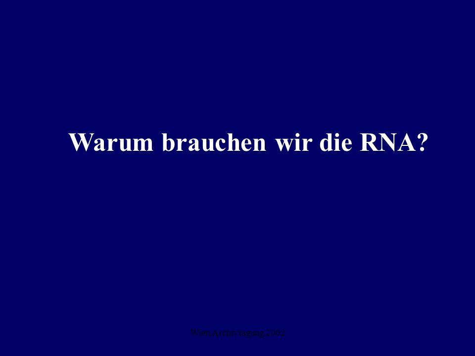 Wien Archivtagung 2002 Warum brauchen wir die RNA?