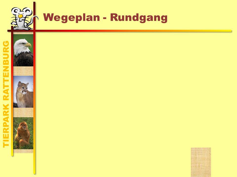TIERPARK RATTENBURG Wegeplan - Rundgang
