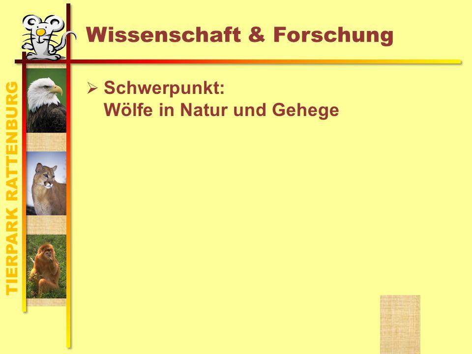 TIERPARK RATTENBURG Wissenschaft & Forschung Schwerpunkt: Wölfe in Natur und Gehege