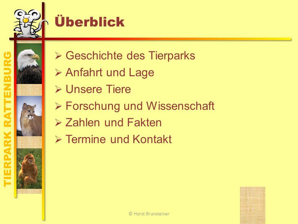 TIERPARK RATTENBURG Geschichte des Tierparks 18.
