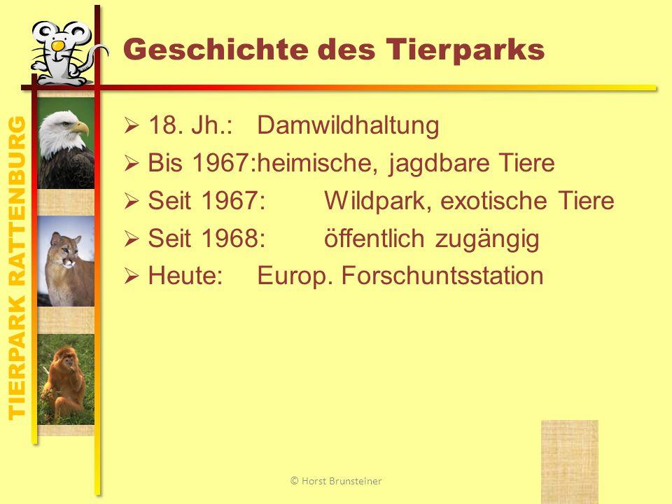 TIERPARK RATTENBURG Überblick Geschichte des Tierparks Anfahrt und Lage Unsere Tiere Forschung und Wissenschaft Zahlen und Fakten Termine und Kontakt © Horst Brunsteiner