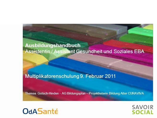 Ausbildungshandbuch Assistent/-in Gesundheit und Soziales EBA Multiplikatorenschulung 9.