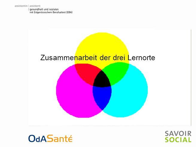 Zusammenarbeit der drei Lernorte