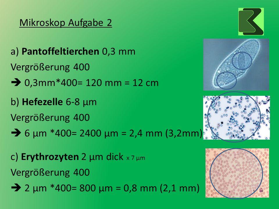 Mikroskop Aufgabe 2 a) Pantoffeltierchen 0,3 mm Vergrößerung 400 0,3mm*400= 120 mm = 12 cm b) Hefezelle 6-8 µm Vergrößerung 400 6 µm *400= 2400 µm = 2